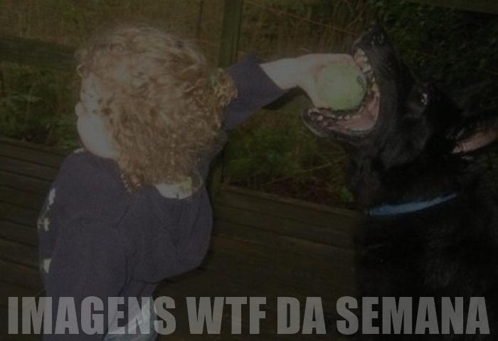 Imagens WTF